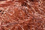 Interested in copper scrap 1000 t a m